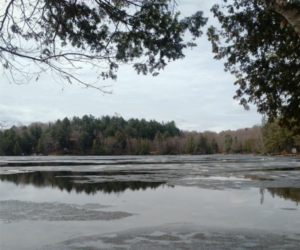 View of Percy Lake from the shorline with a bit of ice remaining on the surface of the water.